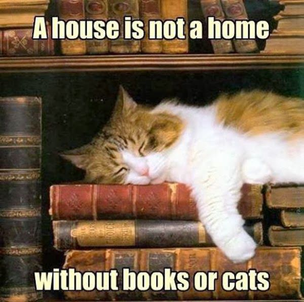"""""""A house is not a home without books or cats."""""""