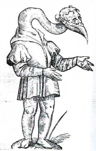 Homo, ore & collo Gruis (translates to Man, mouth and Crane) in Monstrorum Historia