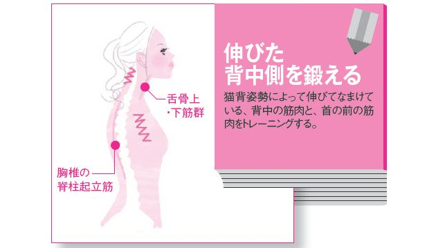 知らず知らずのうちに前屈みに背中を丸めてあごを出し、浅い呼吸でデスクワークをしていませんか? 猫背だという自覚はあっても、「どうすれば治るの?」と困っている人は多いはず。筋膜博士・竹井仁さんに最も効果的な猫背リセット法を教えもらいました。
