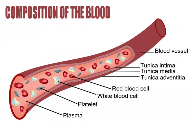 mean platelet volume (MPV) is a measurement that describes the average size of platelet cells in the blood. It is a measurement that is usually included in the results of a typical comprehensive blood test. The importance of mean platelet volume lies in the fact that this measurement provides an indicator as to whether the bone marrow is manufacturing platelets normally.
