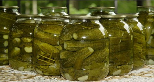 RiseEarth : 3 Reasons Why You Should STOP Throwing Away The Pickle Juice