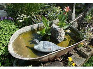"Wheelbarrow ""pond""."