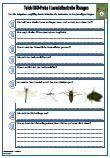 HSU #Teich Unterrichtsmaterial für den Sachkundeunterricht.  Verschiedene Fragen zu dem Thema: Teich •Teich •Tümpel • #Teichzonen •Lebensraum • #Pflanzen •Tiere • #Libelle •Wasserläufer •Gelbrandkäfer •Köcherfliege •Ente •Frosch / Kröte • #Seerose •48 Fragen •2 x Lernzielkontrollen •Ausführliche Lösungen •18 Seiten  Das aktuelle Übungsmaterial enthält genau die Anforderungen, die in der Schule in der Schulprobe / #Lernzielkontrolle / #Klassenarbeit abgefragt werden.