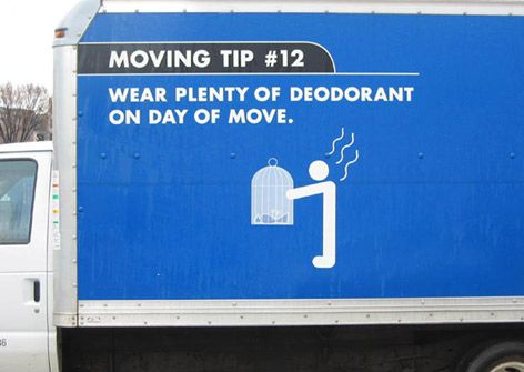 Funny moving day pics funny moving house moments for Funny tip of the day quotes