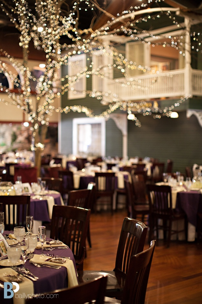 Longfellows Weddings Saratoga Springs NY 46 best