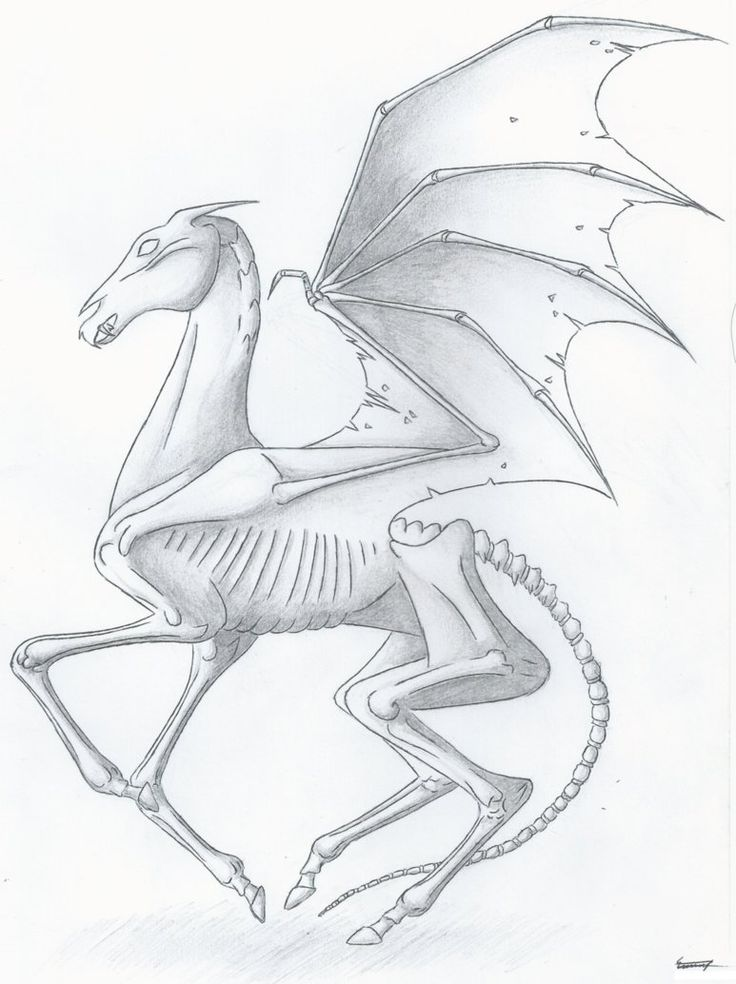Only those who have witnessed death can see a thestral.. my inner nerd wants one as a tattoo