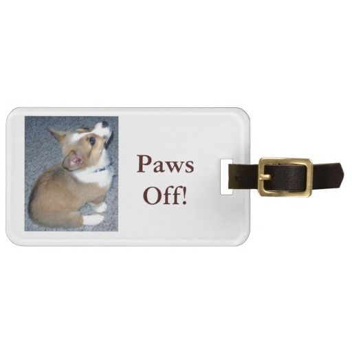 >>>Are you looking for          	Corgi Puppy Gear Tag For Bags           	Corgi Puppy Gear Tag For Bags We provide you all shopping site and all informations in our go to store link. You will see low prices onThis Deals          	Corgi Puppy Gear Tag For Bags Review from Associated Store with ...Cleck Hot Deals >>> http://www.zazzle.com/corgi_puppy_gear_tag_for_bags-256036281591678643?rf=238627982471231924&zbar=1&tc=terrest