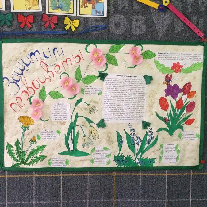 Образовательная деятельность «Защитим первоцветы» - Для воспитателей детских садов - Маам.ру
