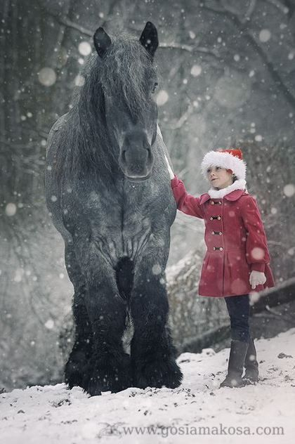 Girl and horse in the snow...