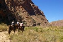 Horse Riding - Mount Ceder. Come and enjoy the rugged beauty and peaceful surroundings of the Cederberg Mountains on horse-back.   Beginners can enjoy a safe, scenic 1 or 2hr ride in the Mount Ceder valley, with the chance to stop and look at bushman paintings; more experienced riders can choose a 4 to 5hr trail down a spectacular valley, with the option of a refreshing swim and a visit to bushman paintings seen by few other people – and if you are lucky, a glimpse of the local wildlife!