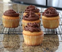 Moist Vanilla Cupcakes- my new favorite cupcake. Didn't use the frosting recipe listed.