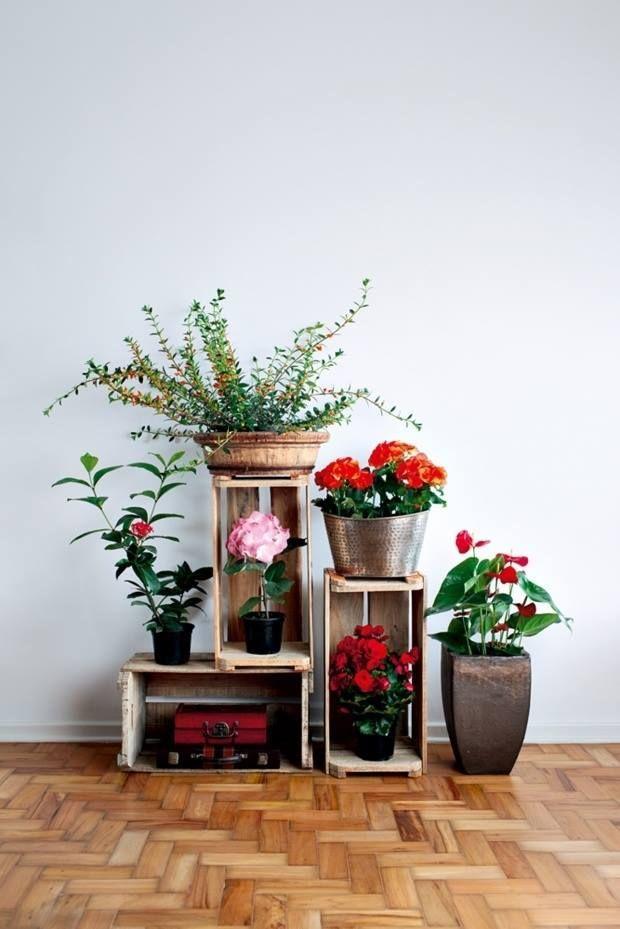 flores en huacales