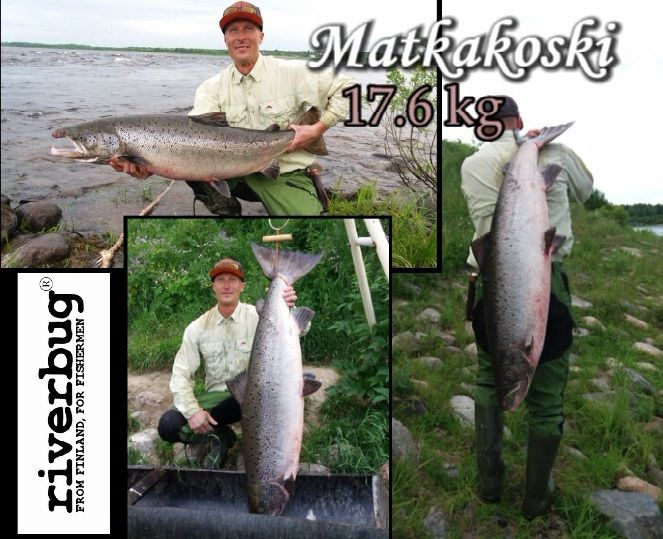 Happy RiverBug tube fly user from Finland. #riverbug #rivertube www.riverbug.fi https://www.facebook.com/pg/river4ranger/photos/?tab=album&album_id=604503286372598