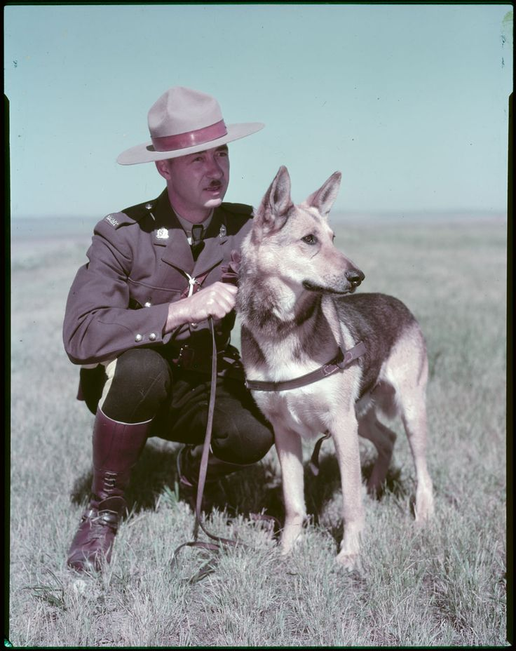 RCMP officer posing with dog in the 1970's