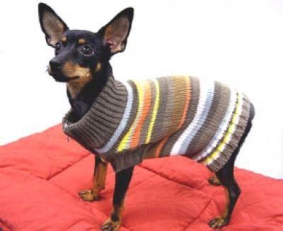 Вязанье собачьи костюмы