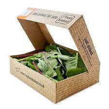 Image result for cardboard salad packaging