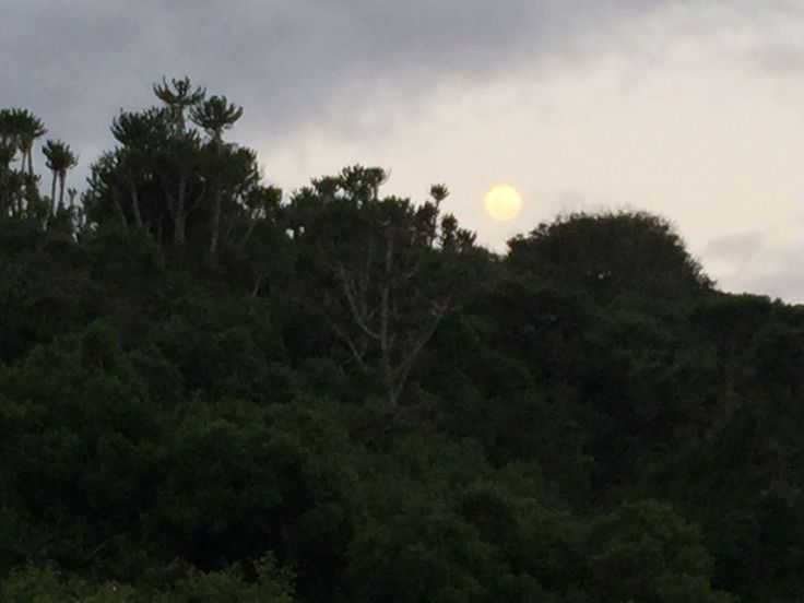 Sibuya Game Reserve full moon over the bush #KentononSea, #EasternCape, #SouthAfrica