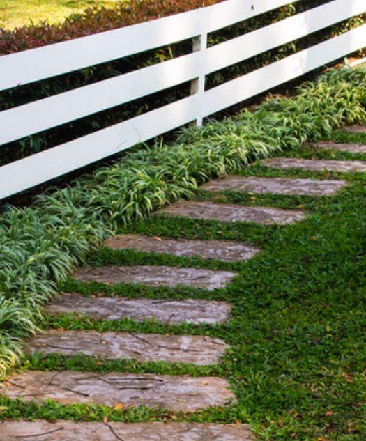 Oltre 25 fantastiche idee su giardino di ghiaia su - Camminamento pietra giardino ...