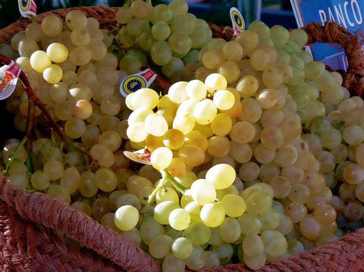 Feria de la Uva, Novelda http://ruta96.wordpress.com/2013/12/23/oro-parece-uvas-son/