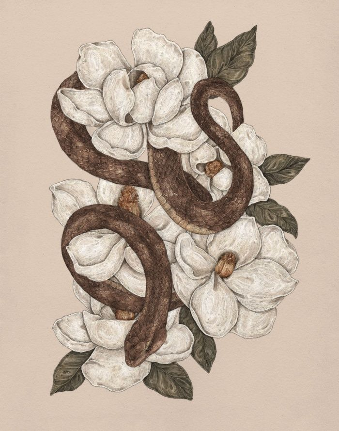 illustration – Snake and Magnolias print by Jessica Roux