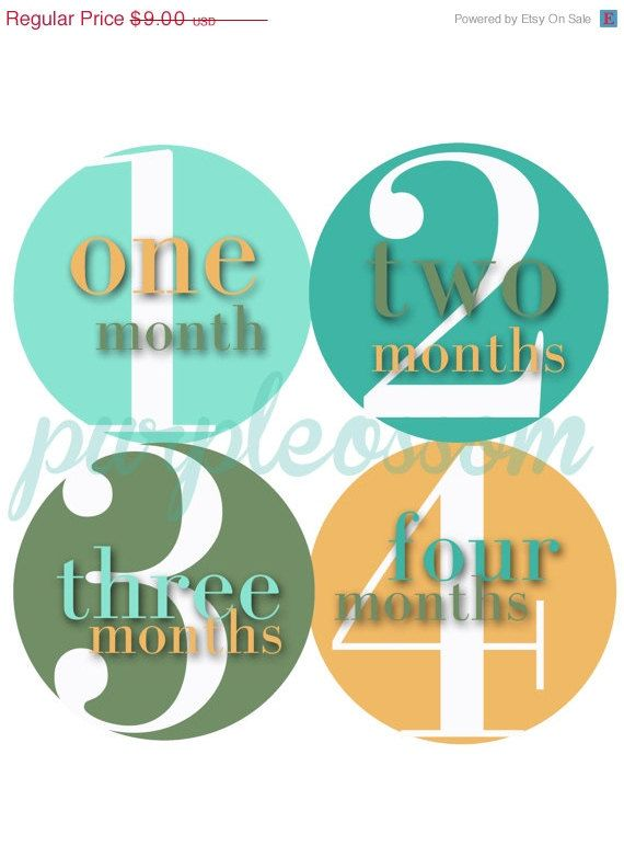 ON SALE Monthly Baby Stickers Baby Month Stickers by PurplePossom, $8.46