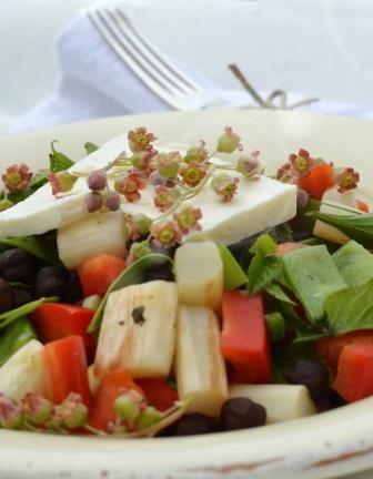 Salad with black chickpeas, aspargues and blackcurrent flowers - Æblegaarden B&B, Langeland, Denmark, www.aeblegaarden.dk Photo by Sannie Terese Burén