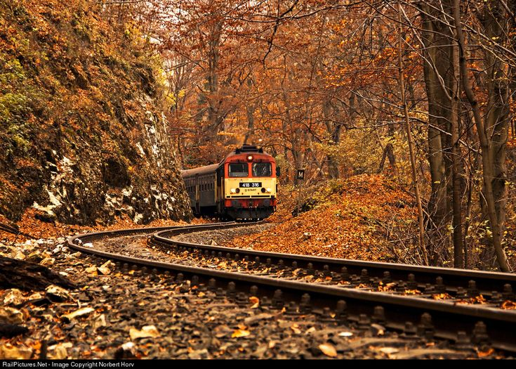 RailPictures.Net Photo: 418 316 Hungarian State Railways (MÁV) 418 at Vinye, Hungary by Norbert Horváth