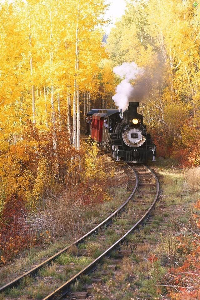 GREAT PIC OF A STREAM TRAIN.
