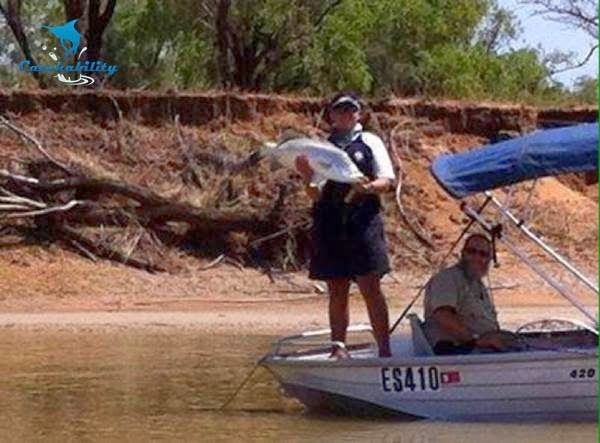 Eric catches A LOT of Barramundi when he's fishing  with Catchability