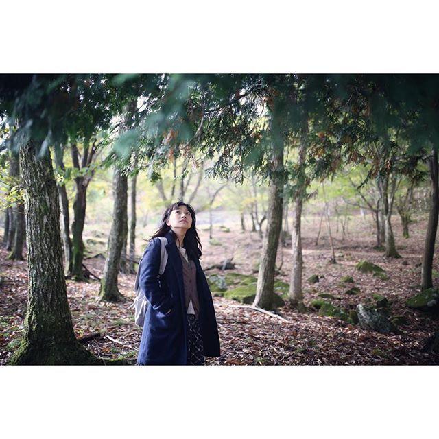 【uptoyou_akko】さんのInstagramをピンしています。 《村上春樹さんの『ノルウェイの森』の映画ロケ地である、砥峰高原とリラクシアの森に行って来ました。仮眠のみで行ったから超疲れたけど、その疲れが吹っ飛ぶほどの素晴らしさ。お天気良くて、改めて朝日の美しさに気付かされました。 #canon6d #sigma35mmart  #リラクシアの森 #兵庫 #神河町 #峰山高原 #リラクシア #森 #落ち葉の絨毯 #ノルウェイの森 #ポートレート #portrait #ロケーションフォト #リアルクローズ #nikoand #写真好きな人と繋がりたい #単焦点》