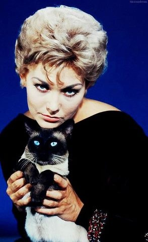 Kim Novak Bell, Book and Candle - Seventh Crow this is a movie that you must see.   I have it and watch it every December.  Love you