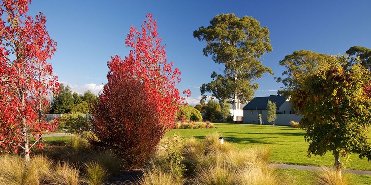 Autumn grounds at Vintners Retreat