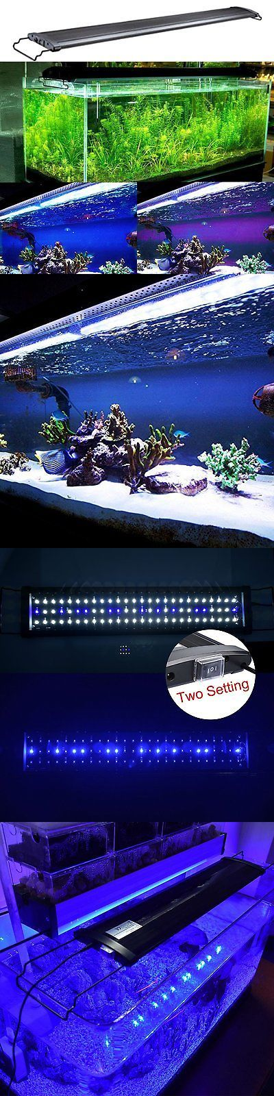 Animals Fish And Aquariums: Ae-Shop Aquarium Hood Lighting Fish Tank Light For Freshwater And Saltwater, And -> BUY IT NOW ONLY: $35.09 on eBay!