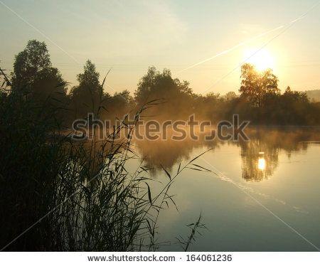 morning on a lake - stock photo