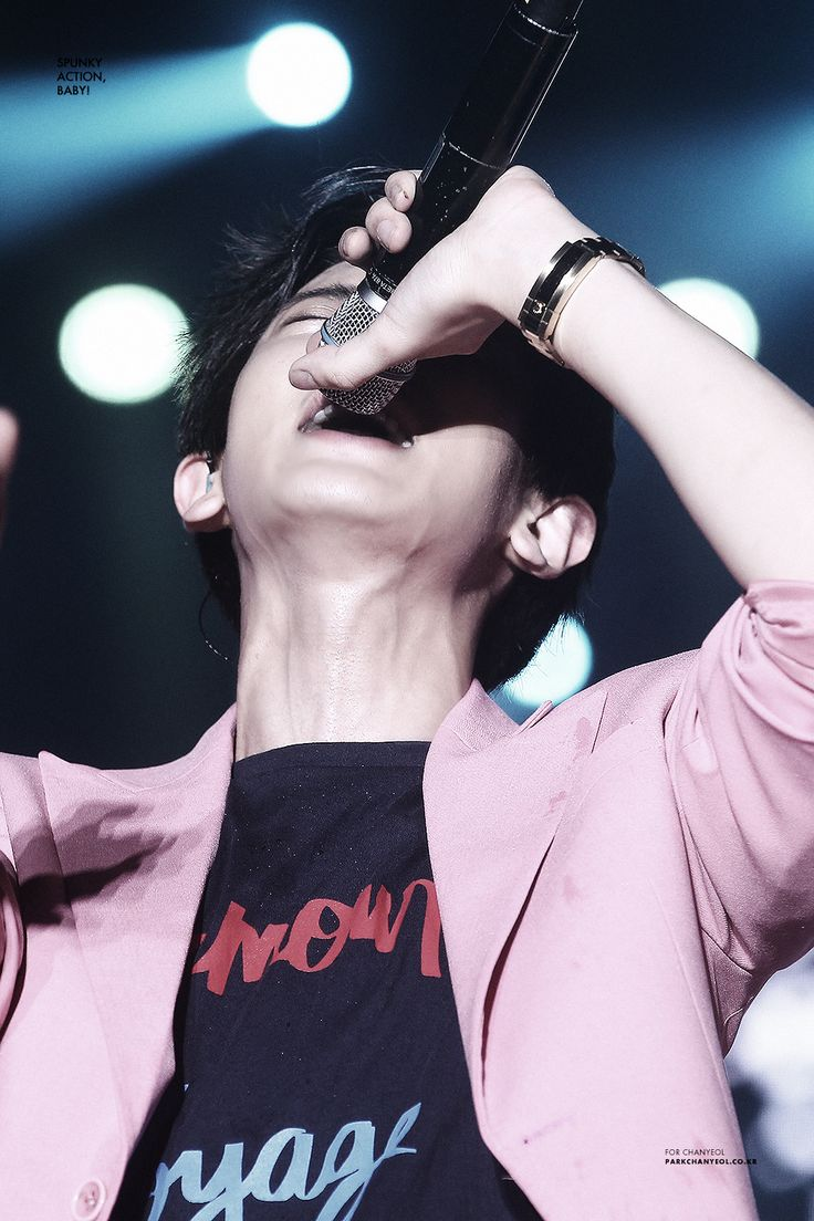 ChanYeol - 150723 Lotte Lovely Young Concert