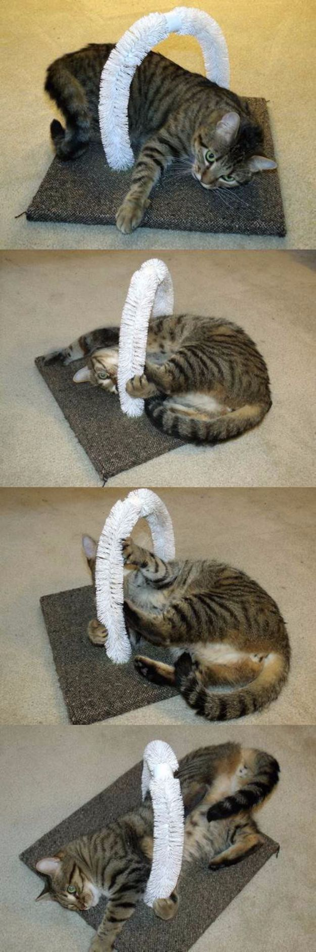 DIY Cat Hacks - DIY Self PEtting Station For Your Cats - Tips and Tricks Ideas for Cat Beds and Toys, Homemade Remedies for Fleas and Scratching - Do It Yourself Cat Treat Recips, Food and Gear for Your Pet - Cool Gifts for Cats http://diyjoy.com/diy-cat-hacks