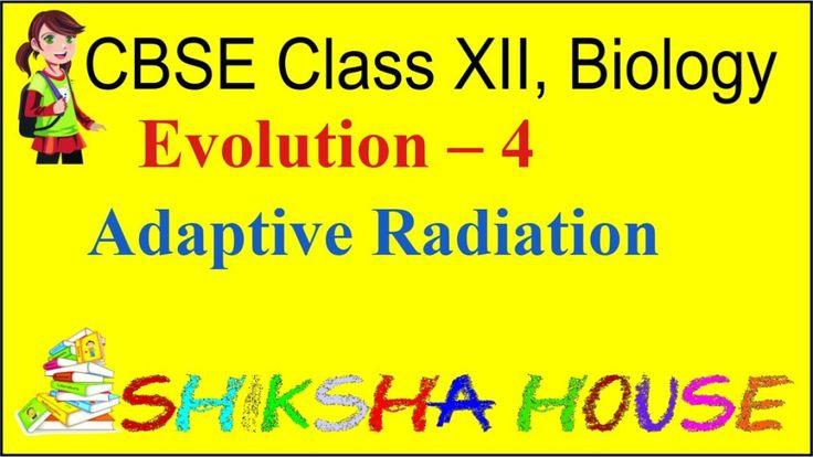 CBSE Class 12 Biology, Evolution – 4, Adaptive Radiation