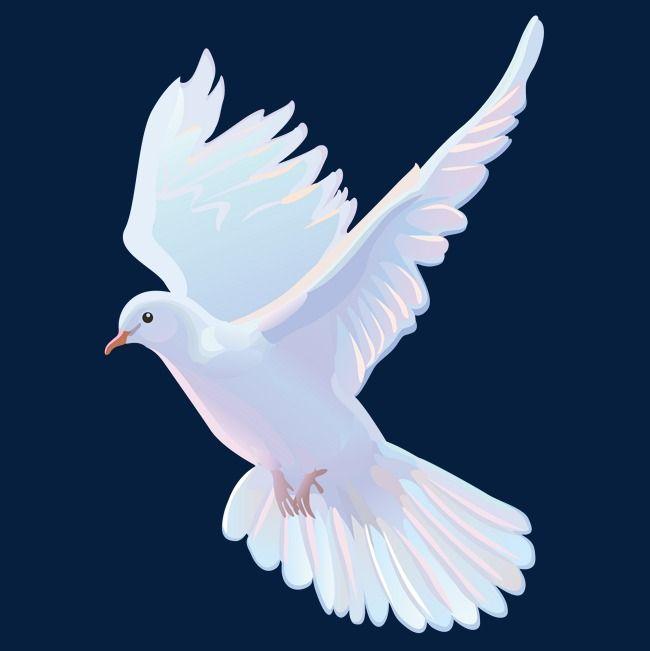 Una Paloma Blanca Vector Material Blanco Palomo Vector Png Y Psd Para Descargar Gratis Pngtree Dove Pictures Dove Images Light Background Images