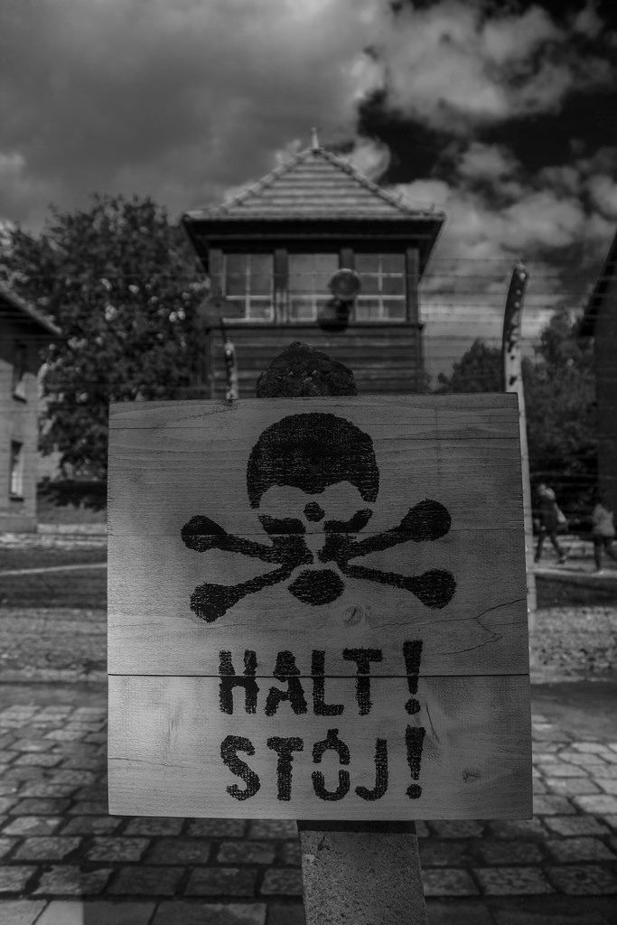 Halt   Stop sign   by Flickr. carlosnubenegra