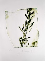 Print by Mireia Rosich: Olives. Dry point. 2009