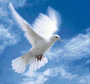 Lo Spirito Santo non è Gesù Cristo e viceversa