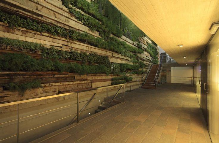 Muro verde con maderas recicladas zentro gonzalezmoix for Muros verdes arquitectura
