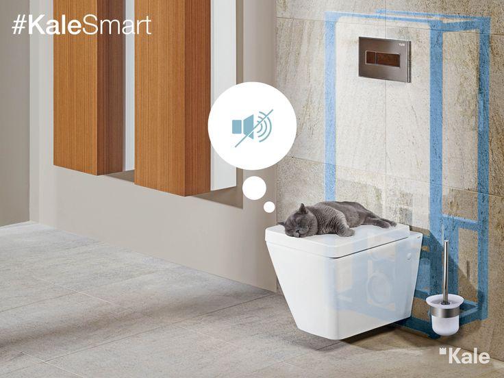 Versus Gömme Rezervuar 3 lt suyu sadece 24 saniyede haznesine doldurur, yenilikçi teknolojisiyle çıt çıkarmadan çalışır, uykuları bölmez. #KaleSmart #Kale #banyo #tasarım #bathroom #bathroomidea #dekorasyon #dekorasyonönerileri #decorationidea #smart #smartdesign #smartbathrooms #akıllıev