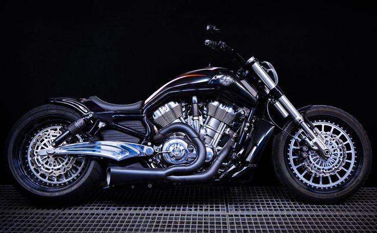 MS Artrix 'Muscle Dodo' - http://msartrix.com/bike-gallery/original-modified/muscledodo