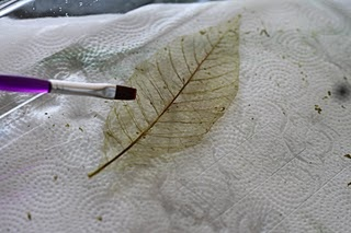 diy- how to strip a leaf to just its skeleton