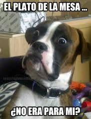 videoswatsapp.com videos graciosos memes risas gifs graciosos chistes divertidas humor http://ift.tt/2ma4dk5