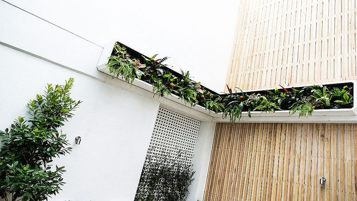 In Pictures: Max + Karstan's 'breathtaking' terrace   The Block Glasshouse   9Jumpin