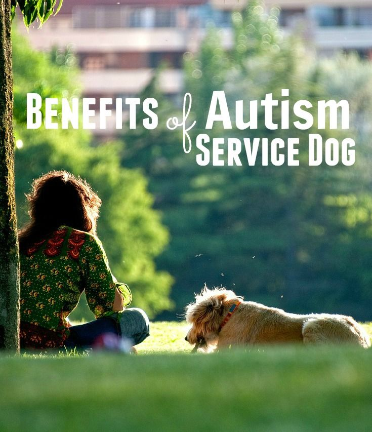 Benefits of Autism Service Dog
