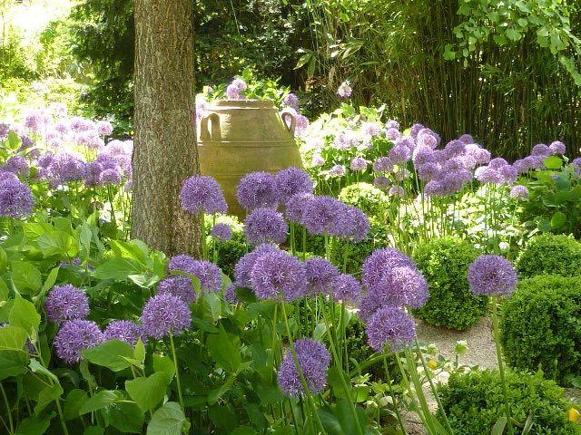 Awesome 20 flower garden ideas partial sun design for Partial shade garden designs