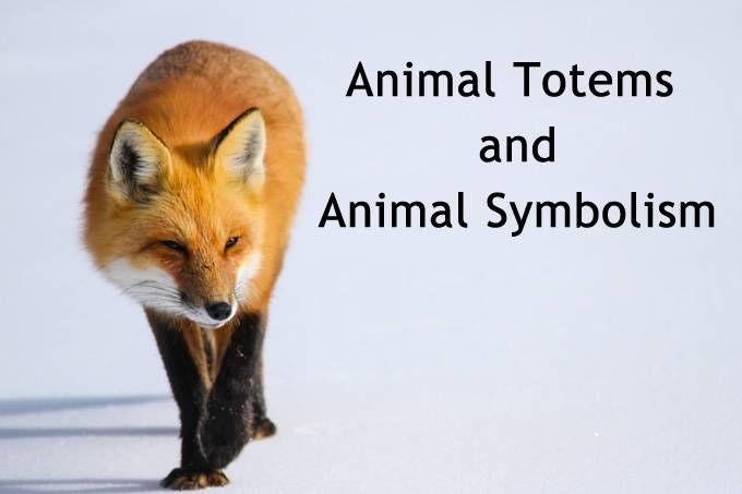 animal totems, animal symbols, animal meanings